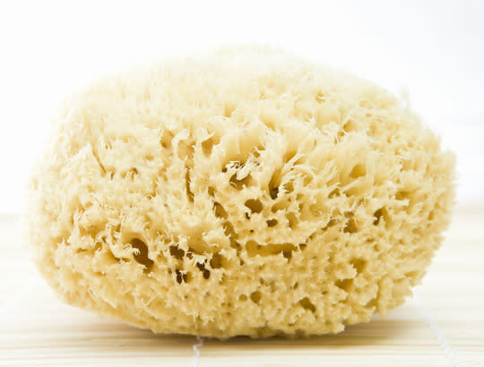 """<p>To be clear, loofahs and sponges don't have to be completely axed from your shower routine. However, it does need to be noted that these bath tools can harbor some serious bacteria if you don't <a href=""""https://www.yahoo.com/health/when-to-wash-toss-or-c1423160101587.html"""" data-ylk=""""slk:replace them often enough;outcm:mb_qualified_link;_E:mb_qualified_link;ct:story;"""" class=""""link rapid-noclick-resp yahoo-link"""">replace them often enough</a>. """"Loofahs can harbor bacteria, mold, yeast and a host of other nasty things,"""" says Tanzi. """"Allow your loofah to dry completely every day and replace it frequently."""" <br></p>"""