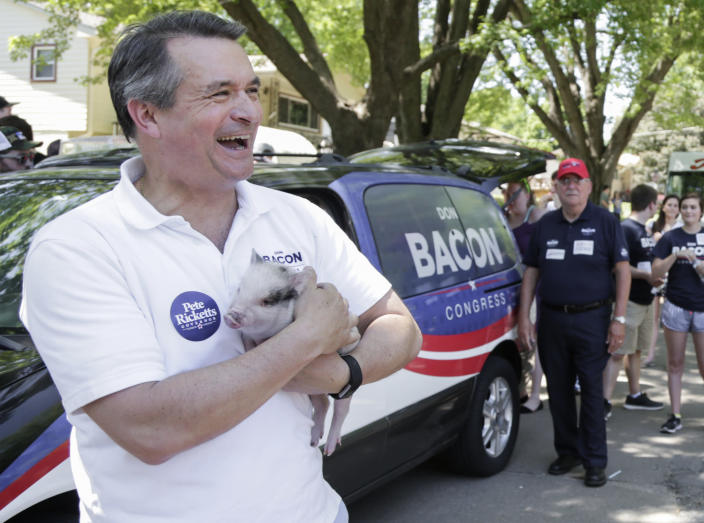 Republican Rep. Don Bacon of Nebraska holds a potbelly pig named Betty before a parade on May 26, 2018. Bacon will face Democratic challenger Kara Eastman in the November election. (AP Photo/Nati Harnik)