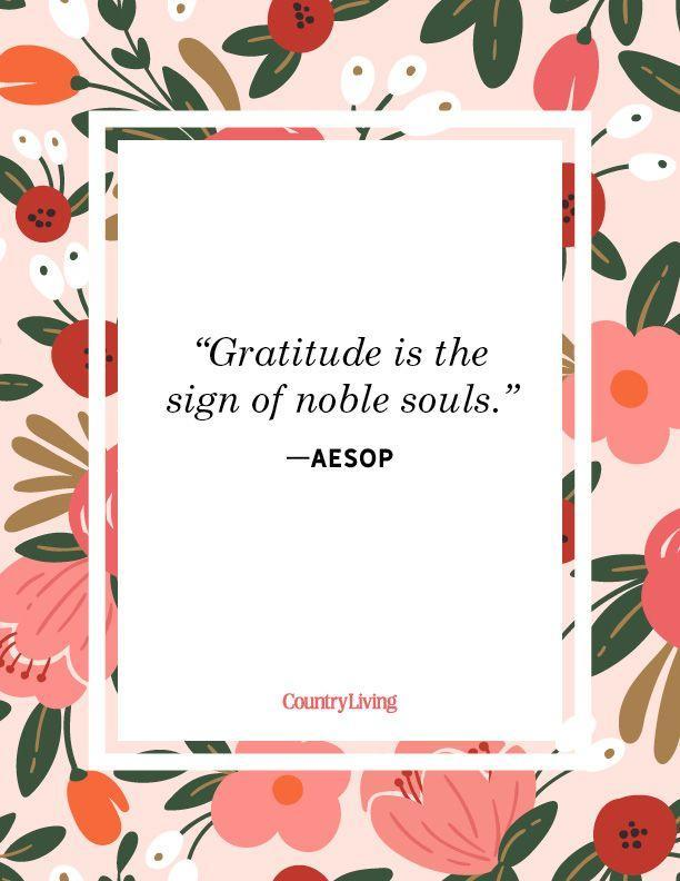 """<p>""""Gratitude is the sign of noble souls.""""</p>"""