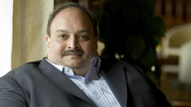Choksi is accused of cheating Punjab National Bank to the tune of Rs 13,000 crore in collusion with his nephew Nirav Modi. He has submitted in a Mumbai court that he's expressed his willingness to join the investigation through video conferencing.