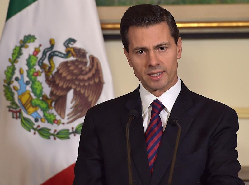 President Enrique Pena Nieto speaks to the press in Paris, France on July 12, 2015 (AFP Photo/)