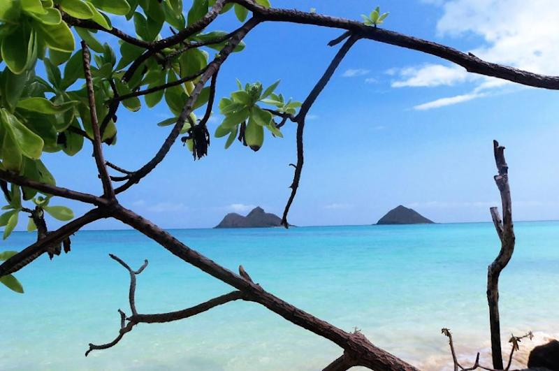 When is the best time to travel to Hawaii. Photo: Supplied