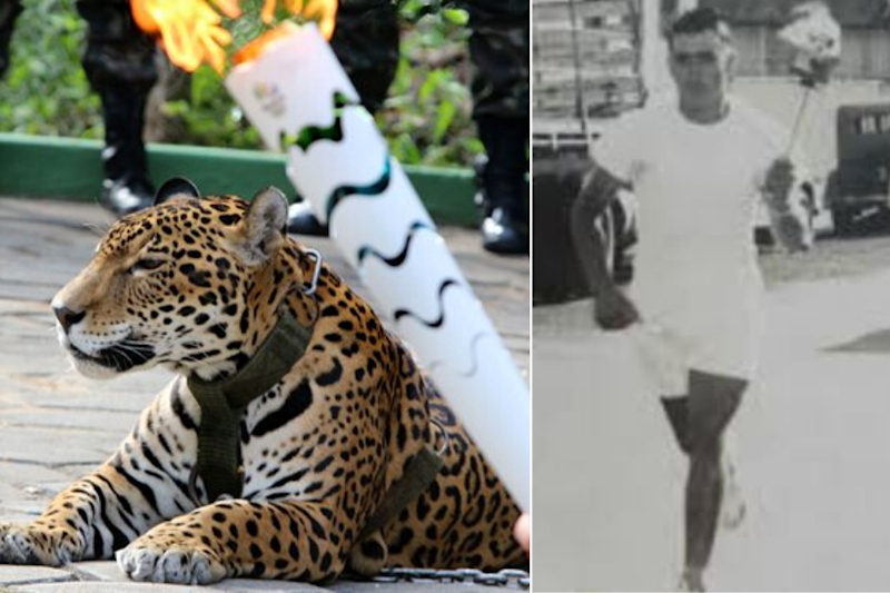 Jaguars and Flamming Underpants! When Olympic Torch Relays Went Wrong