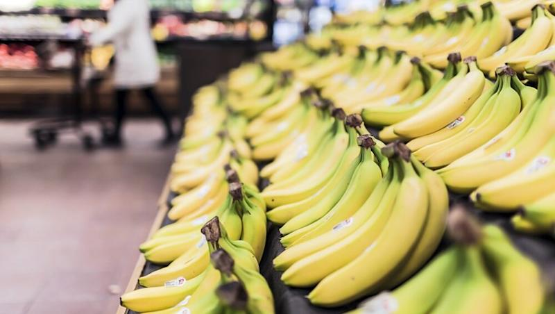 A World Without Bananas? Deadly Fungus Outbreak in Colombia Threatens to Push Our Favourite Fruit to Extinction
