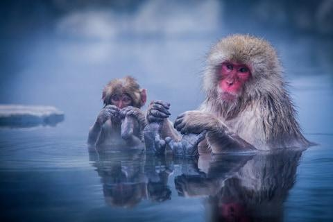 Few trips to Japan are complete without at least one muscle-melting soak in a steaming hot spring onsen - Credit: GETTY