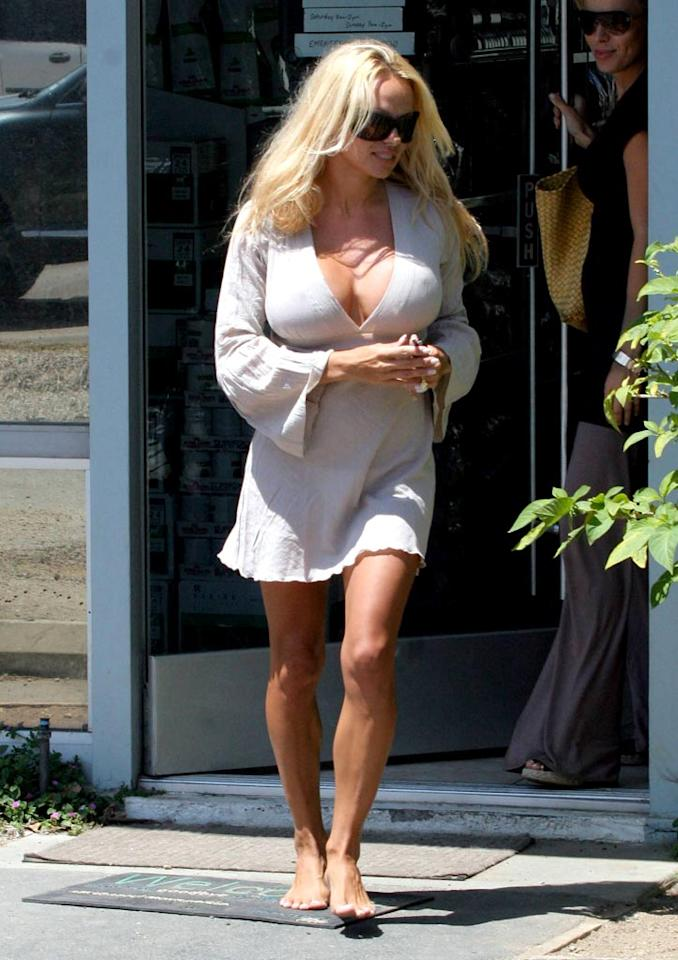 "Pamela Anderson risks walking barefoot in a veterinarian's parking lot. Sione/<a href=""http://www.x17online.com"" target=""new"">X17 Online</a> - August 15, 2006"