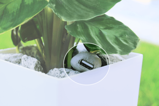 Phone-osynthesis : Bioo Lite is a pot that uses plants to charge your phone