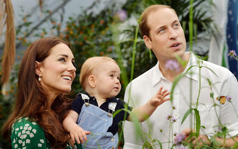 Prince George with his parents at the Natural History Museum in 2014 - Credit: John Stillwell /AFP/Getty