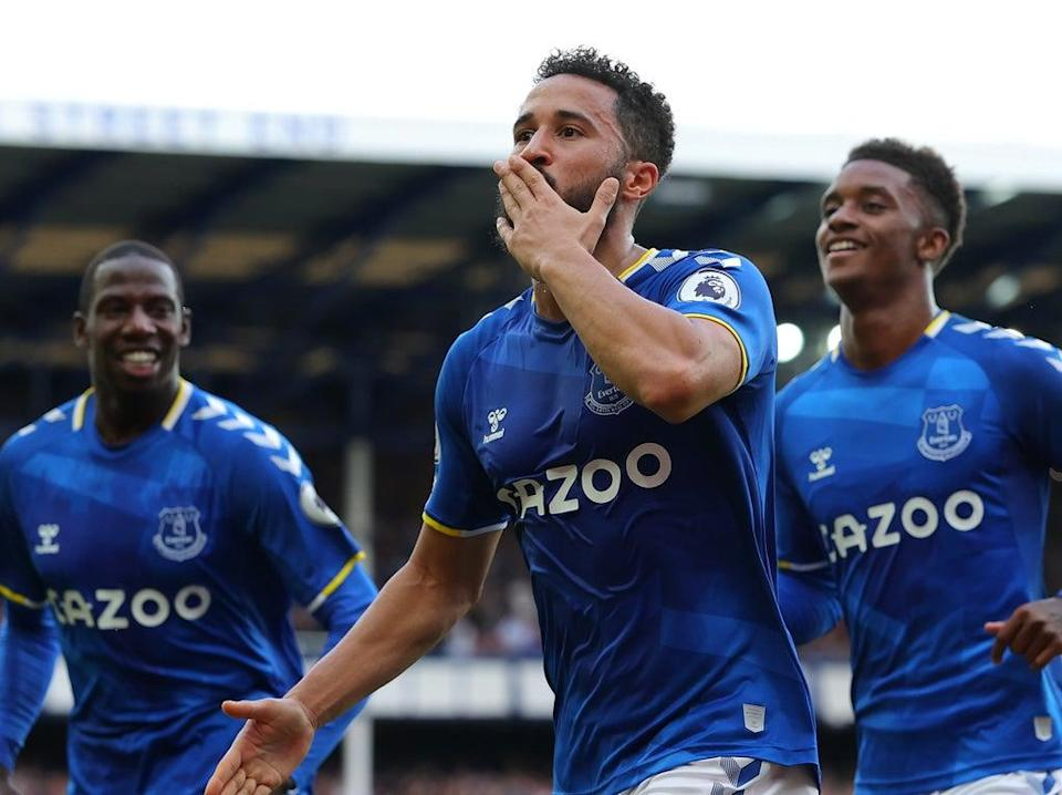 Andros Townsend celebrates scoring Everton's opener against Norwich (Getty Images)