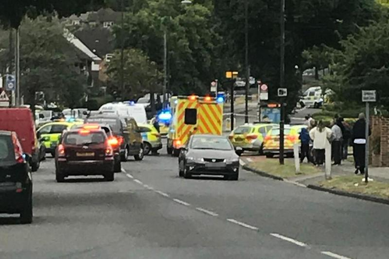 A large police presence was pictured at the scene on Mottingham Road: Twitter/Phil Chatman