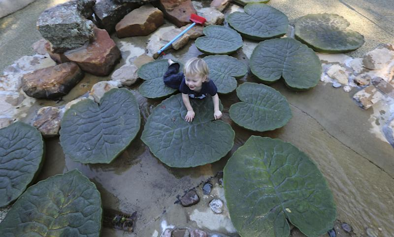 In this Monday, Sept. 23, 2013 photo, twenty-month-old Camden Haxel plays at the Rory Meyers Children's Adventure Garden at the Dallas Arboretum, in Dallas. The arboretum that sprawls out on the edge of Dallas' White Rock Lake unveiled the $62 million new children's garden that aims to teach kids lessons in science while they have fun in the lush landscape. (AP Photo/LM Otero)