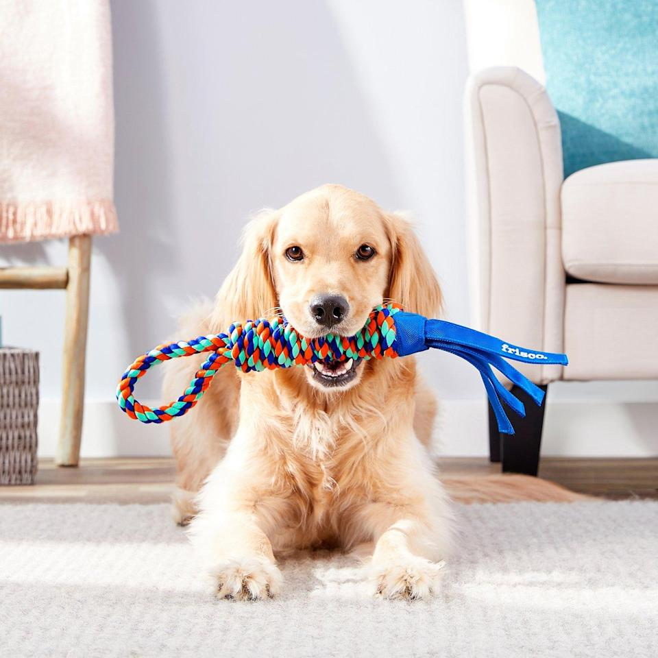 Frisco Rope with Handle & Tassels Dog Toy (Photo: Chewy)