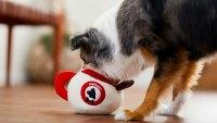 chewy-holiday-gift-dog-toys