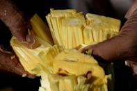 Jackfruit, which weighs five kilogrammes (11 pounds) on average, has a waxy yellow flesh when ripe and is eaten fresh, or used to make cakes, juices, ice creams and crisps (AFP Photo/Arun SANKAR)