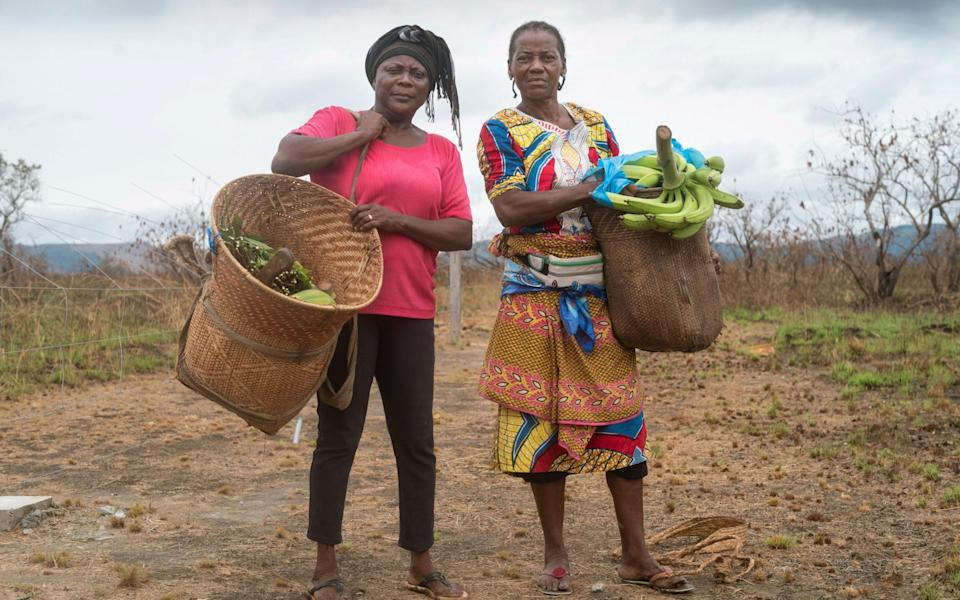 Chanto Debako, 55 (pink top and Marie Christine 58 with their daily harvests of crops and in their Manyok plantation, which is all protected by the electric elephant fence - David Rose