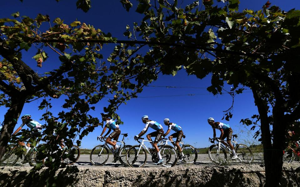 The peloton passes by a vineyard during theGiro d'Italia – 2020 edition of the Giro d'Italia teams 2021: Full list of teams and riders starting in Turin - AFP
