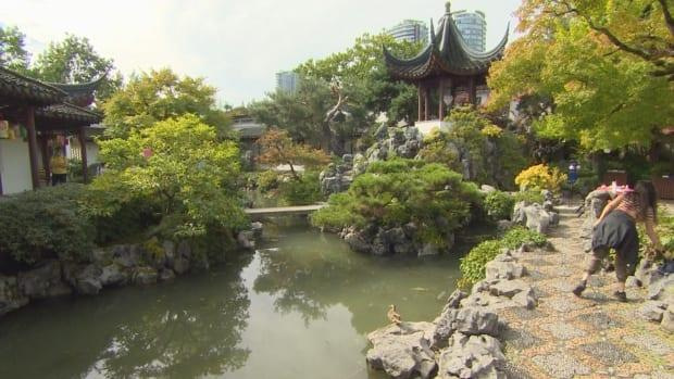 The Dr. Sun Yat-Sen Classical Chinese Garden in Vancouver, British Columbia, pictured on Tuesday, Sept. 21, 2021.  (Tristan Le Rudulier/CBC - image credit)