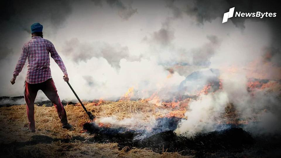 Centre assures law on stubble burning, SC stays one-man panel