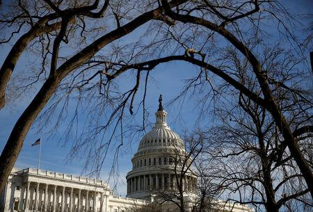 FILE PHOTO: The U.S. Capitol is seen from behind trees after President Donald Trump and the U.S. Congress failed to reach a deal on funding for federal agencies in Washington, U.S., January 20, 2018.      REUTERS/Joshua Roberts