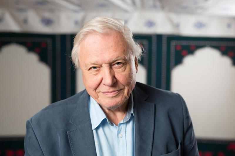 Fuming: Sir David Attenborough fans are not happy: PA