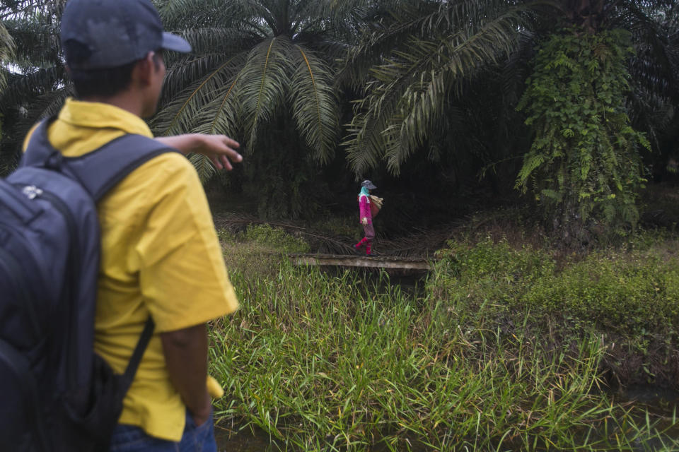 A woman walks with a sack of fertilizer to be spread in a palm oil plantation in Sumatra, Indonesia, Nov. 14, 2017. Some workers who suffer from collapsed uteruses, caused by the weakening of the pelvic floor from repeatedly squatting and carrying overweight loads, create makeshift braces by tightly wrapping scarves or old motorbike tire tubes around their mid-sections. (AP Photo/Binsar Bakkara)