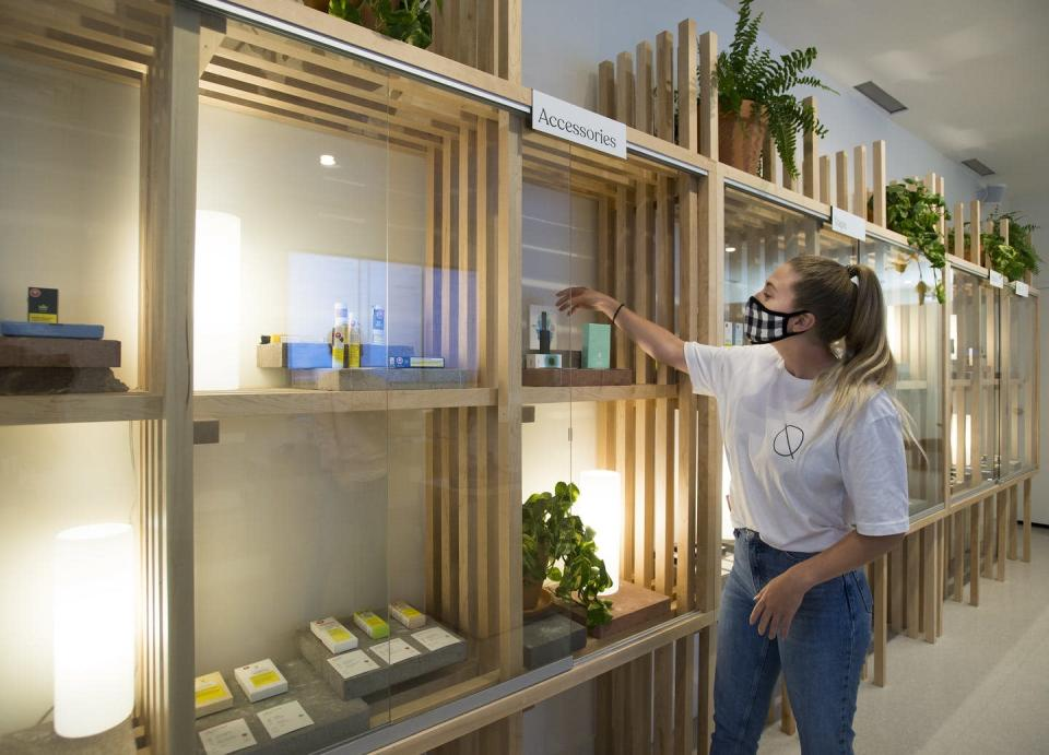 A cannabis store employee arranges products on backlit wooden shelves.
