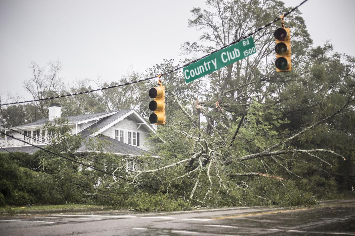A fallen tree lies in front of a house in Wilmington.