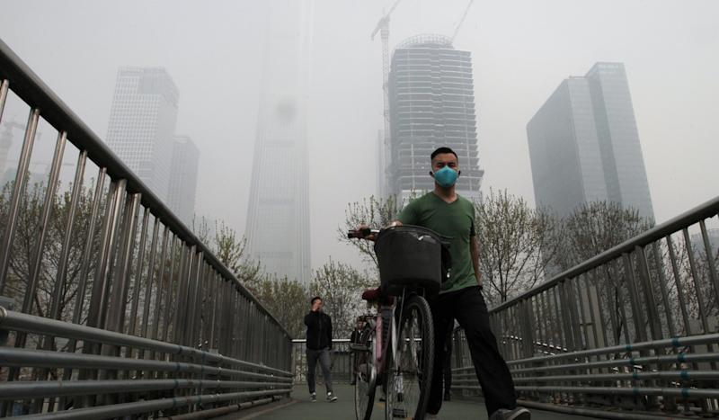 More trees, more smog? How Beijing's huge planting campaign may be trapping pollution