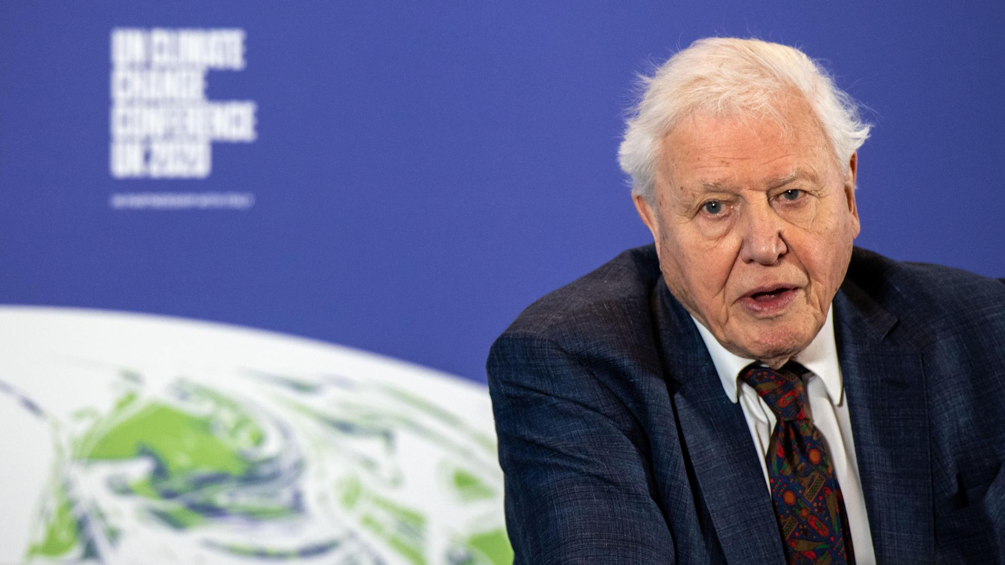 Sir David Attenborough enjoyed 'completely different soundtrack' of lockdown