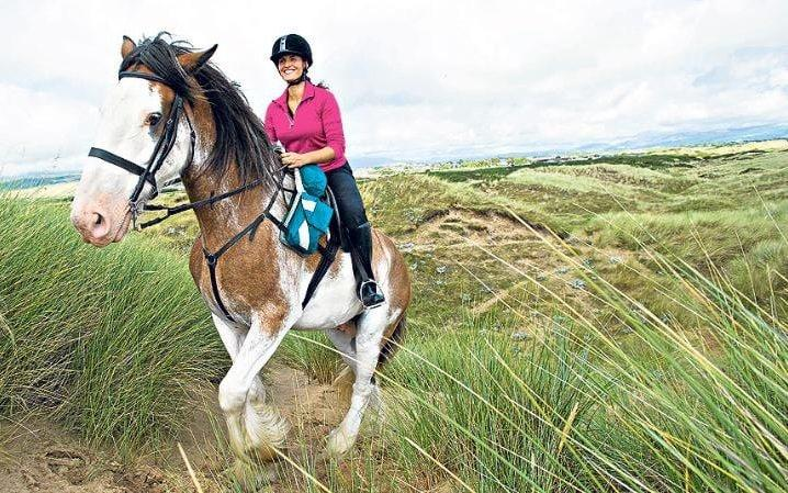 Horses may be injured by weighty riders, a new study has shown