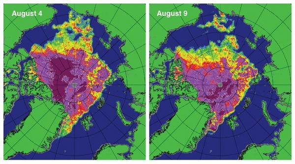 These maps of sea ice concentration from the Special Sensor Microwave Imager/Sounder (SSMIS) passive microwave sensor highlight the very rapid loss of ice in the western Arctic (northwest of Alaska) during the strong Arctic storm. Magenta and p