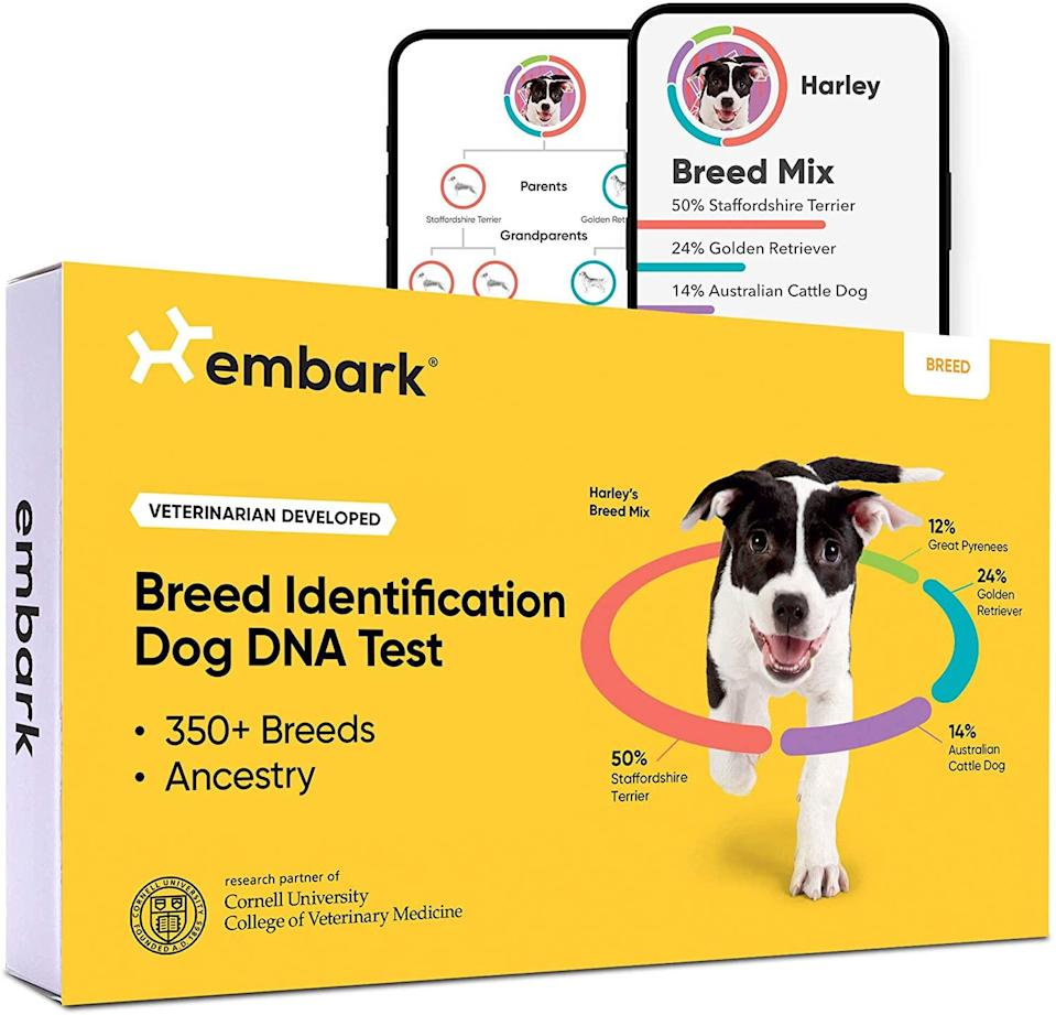 """<h2>Embark Dog DNA Test   Breed Identification Kit</h2><br><br><strong>Embark</strong> Dog DNA Test   Breed Identification Kit, $, available at <a href=""""https://amzn.to/2SSP4Gc"""" rel=""""nofollow noopener"""" target=""""_blank"""" data-ylk=""""slk:Amazon"""" class=""""link rapid-noclick-resp"""">Amazon</a>"""