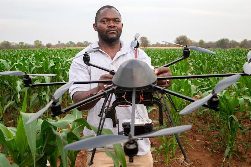 A technician holds a drone used to scout a plot of a heat-tolerant hybrid maize growing at the Chiredzi Research Station, on October 24 2016 (AFP Photo/Jekesai Njikizana)