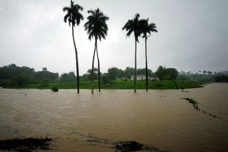 A view of a partially flooded farm as Subtropical Storm Alberto passes by the west coast of Cuba in Bahia Honda