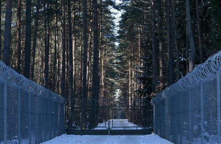 Barbed wire fence surrounding a military area is pictured in the forest near Stare Kiejkuty village, close to Szczytno in northeastern Poland