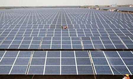 Workers install photovoltaic solar panels at the Gujarat solar park REUTERS/Amit Dave