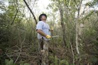 """Dan Keenan, a mechanical engineer, looks for python nests as he makes his way through the thick underbrush in the Big Cypess National Preserve, Saturday, Jan. 12, 2013. Officials hope the """"Python Challenge"""" competition will help rid the Everglades of the invaders while raising awareness about the risks exotic species pose to Florida's native wildlife. (AP Photo/J Pat Carter)"""