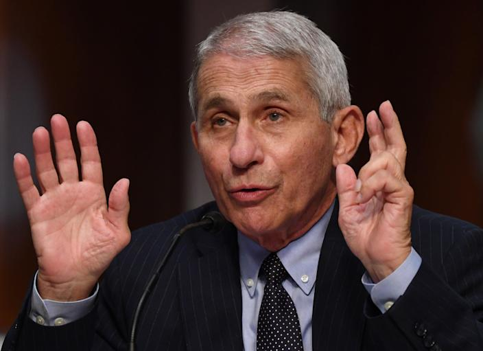 Dr. Anthony Fauci, director of the National Institute for Allergy and Infectious Diseases, testifies before the Senate Health, Education, Labor and Pensions (HELP) Committee hearing on Capitol Hill in Washington DC on 30 June, 2020 in Washington, DC. (POOL/AFP via Getty Images)