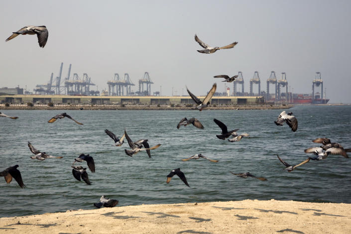 Seagulls fly in front of the Red Sea port city of Jiddah, Saudi Arabia, Friday, Oct. 11, 2019. Iranian officials say two missiles struck an Iranian tanker traveling through the Red Sea off the coast of Saudi Arabia. (AP Photo/Amr Nabil)