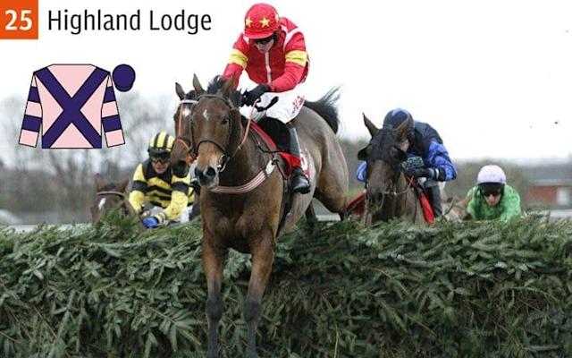 Highland Lodge is tipped to do well - REX FEATURES