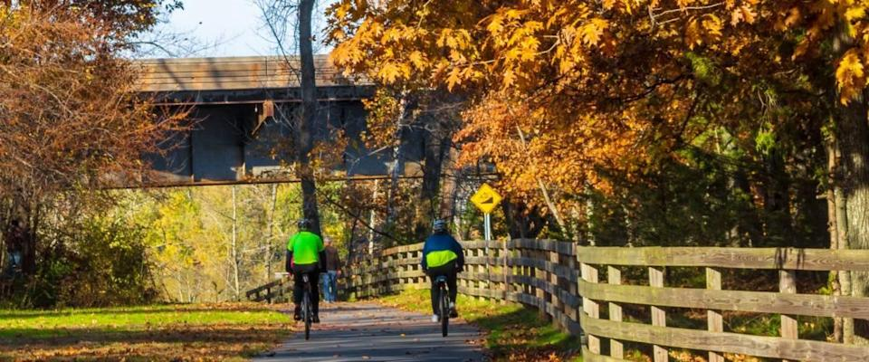 Suffield, Connecticut / USA - November 4 2018: Two cyclists ride on a bike path under large oak trees on an autumn day