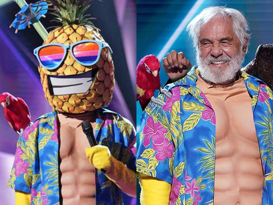 pineapple tommy chong
