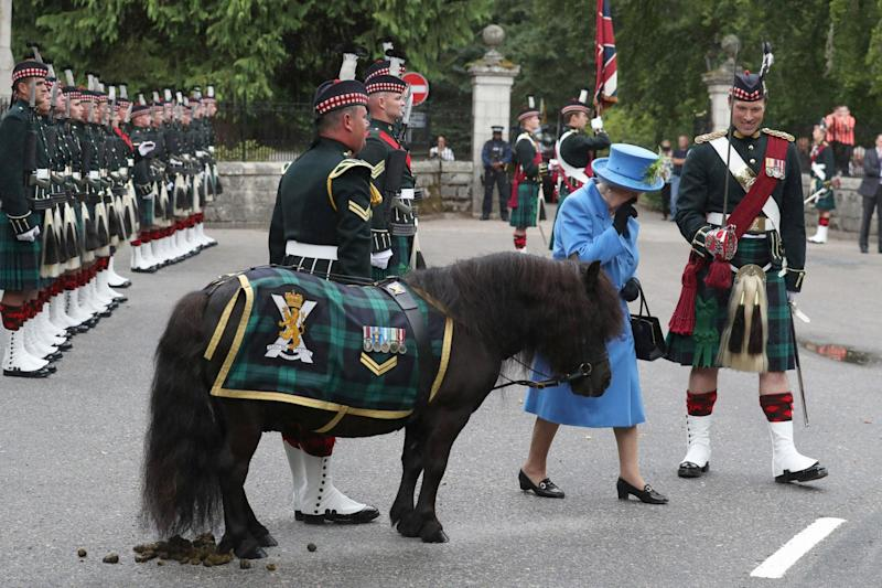 Regimental mascot Cruachan IV relieved himself in front of the queen during her visit to The Royal Regiment of Scotland (PA)