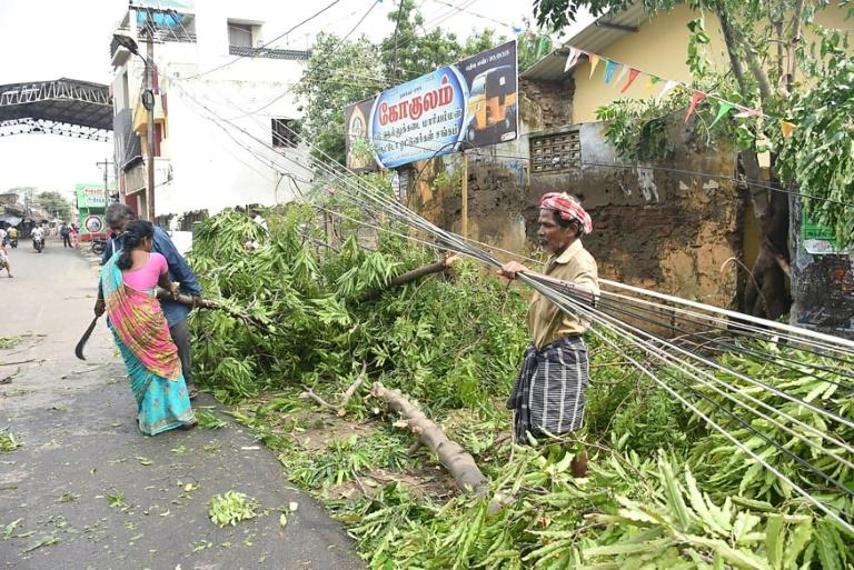 Thousands of trees were felled by winds that destroyed homes and hundreds of thousands were forced to flee to shelters in India's southern Tamil Nadu state after a cyclone struck the region