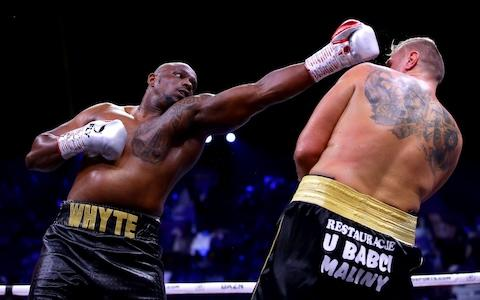 Dillian Whyte and Mariusz Wach - Credit: Richard Heathcote/Getty Images