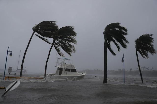 <p><strong>Miami</strong><br>Boats ride out Hurricane Irma in a marina on Sept. 10, 2017 in Miami, Fla. (Photo: Joe Raedle/Getty Images) </p>