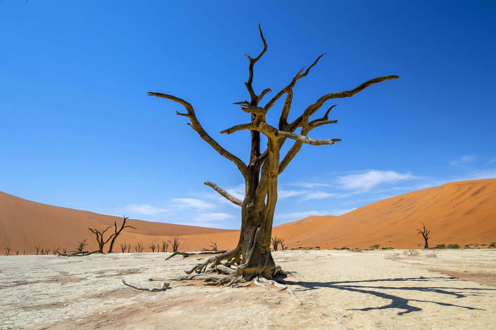Sossusvlei is a salt and clay pan surrounded by high red dunes located in the southern part of the Namib Desert, in the Namib-Naukluft National Park of Namibia. It's a true paradise for photographers. (Photo: Gordon Donovan/Yahoo News)