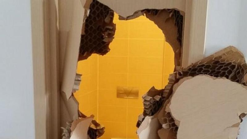 Johnny Quinn Explains 'Unfortunate Mishap' With Sochi Bathroom Door