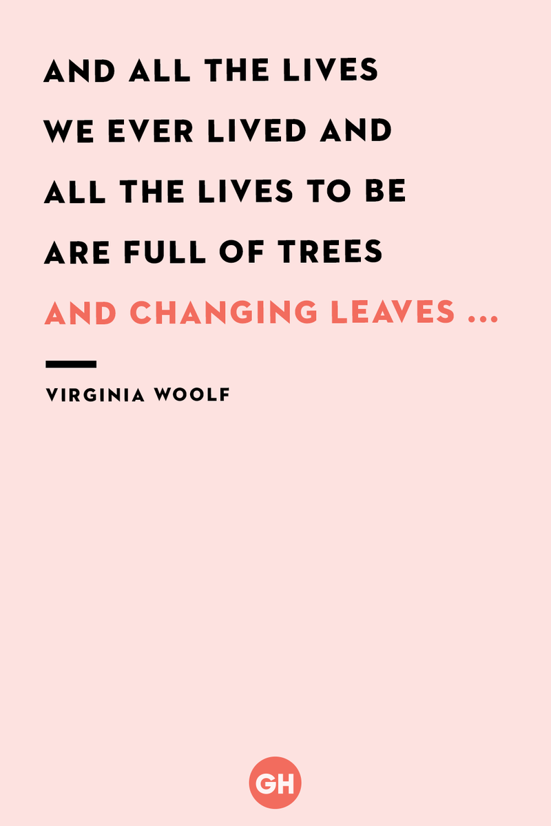 <p>And all the lives we ever lived and all the lives to be are full of trees and changing leaves ...</p>