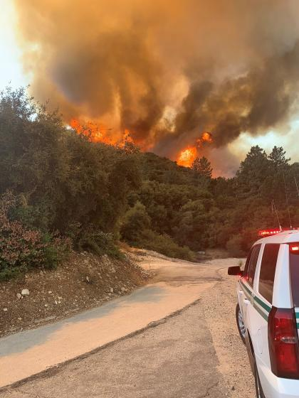 """The Bobcat fire that started near Cogswell Dam in Angeles National Forest had burned an estimated 4,871 acres of brush as of Monday morning, U.S. Forest Service officials said. <span class=""""copyright"""">(Angeles National Forest)</span>"""